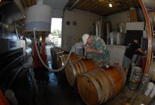 Valley Grown and City Pressed, Jaffurs Wine Cellars Harvests Its '07s