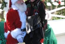 Holiday Spirit in Goleta