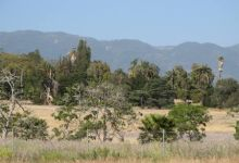 What Is Best for Bishop Ranch?