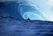 SBIFF '09: Surf Movies and More