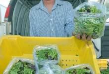Farmer Tom Shepherd Stays Fresh