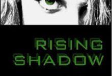 Young Adult Novels Set at UCSB
