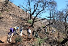 Rattlesnake and San Roque Side of Jesusita Trails to Re-Open Friday