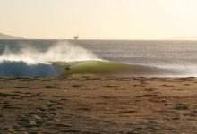 Surf Addict's Journal