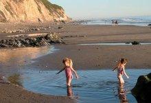 Local Beaches Make the Grade … Sort Of