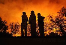 Studying Wildfires and Mental Health