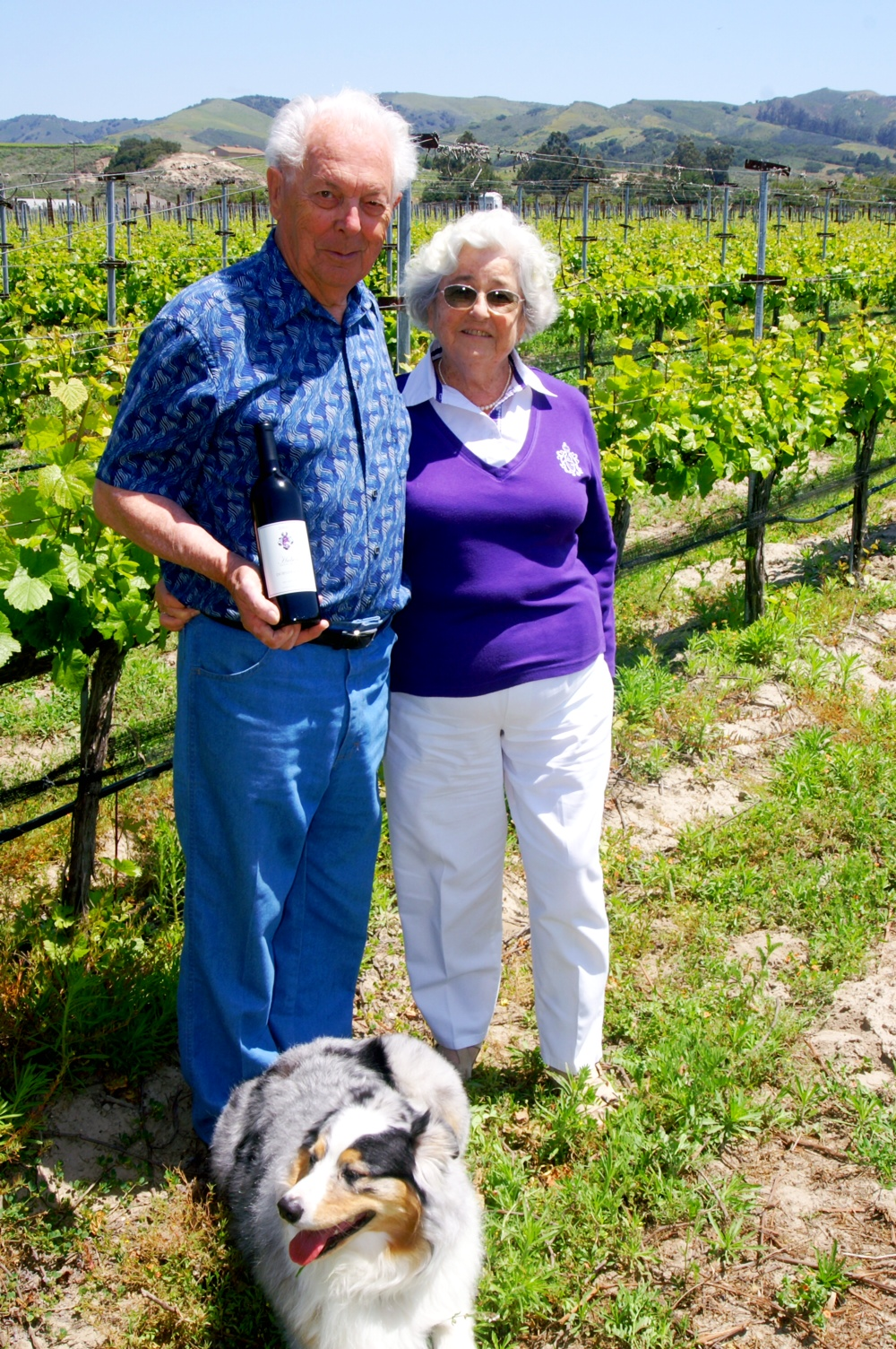 Pali Wine Co  Contracts Huber Vineyard - The Santa Barbara