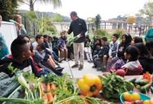 Explore Ecology Runs Country's Biggest School Garden Program