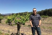 The Wild Wine Harvest of '95