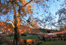 Getting Married at El Capitan Canyon Resort