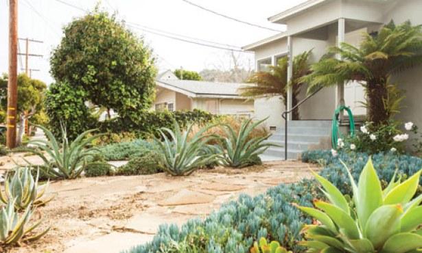 Happy Homes & Graceful Gardens