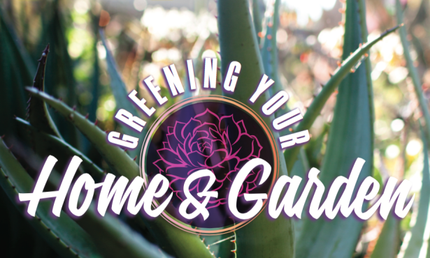 Greening Your Home & Garden