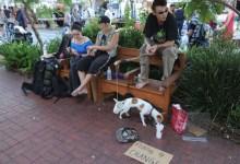 Santa Barbara's Open Season on Panhandlers