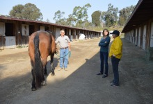 Protecting Large Animals from the Thomas Fire
