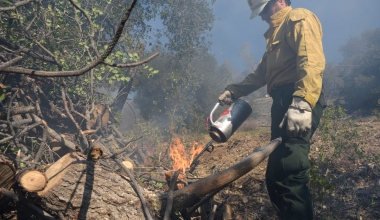 Figueroa Mountain Smokes in Controlled Burn