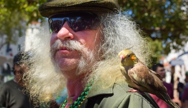 The Independent's 12th Annual St. Patrick's Day Stroll