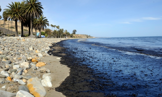 $22 Million Restoration Plan for Refugio Oil Spill Released