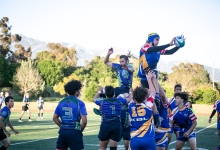 Stingrays Beat Kiwis in Rugby Showdown
