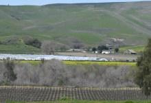 Santa Barbara County Sued over Hoop Ordinance