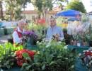 Carpinteria Museum Marketplace & Annual Plant & Flower Sale