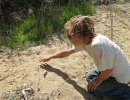 Lunch & Learn: Hidden Messages in Animal Tracks