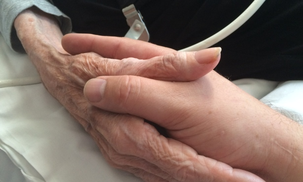 Hospice Orgs Need Volunteers for 'No One Dies Alone' Program