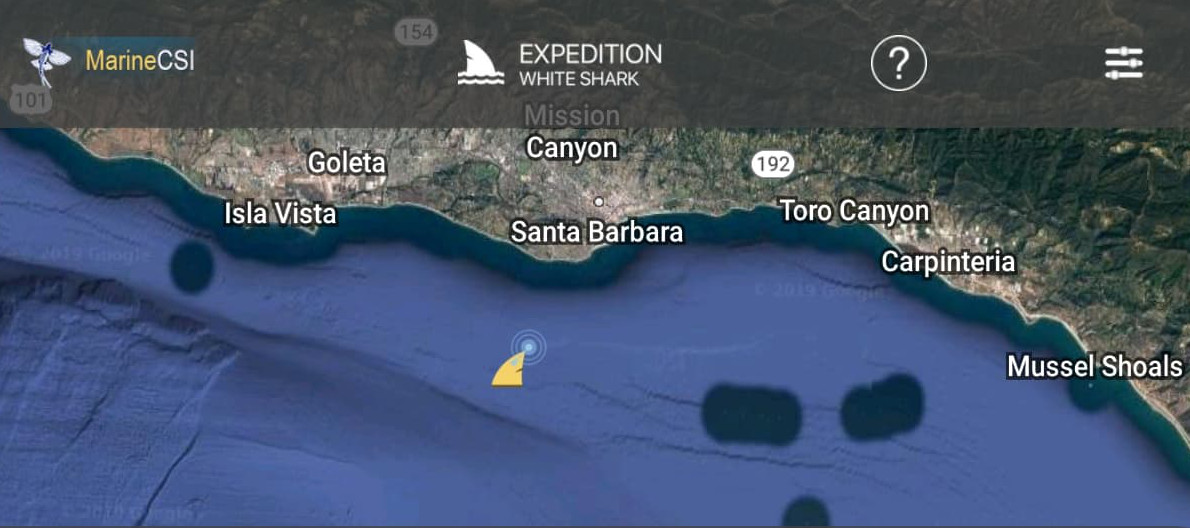 This App Lets You Track Tagged Sharks - The Santa Barbara Independent