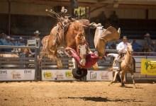 Equestrians, Soccer Club Clash Over Earl Warren's Future