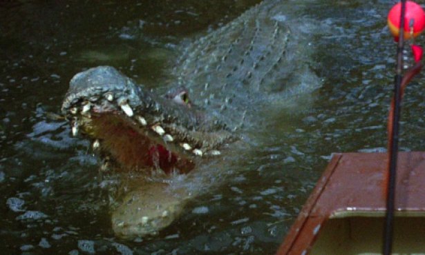 'Crawl': Sad Turgid Swamp Gator Epic