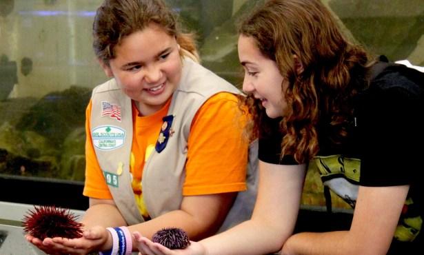 Girl Scouts Take UCSB
