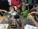 Herbal First Aid Kits For Families Workshop