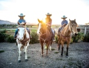 Riding Wine Country with Vino Vaqueros
