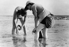 Rachel Carson and 'Silent Spring'