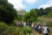 Arroyo Hondo Preserve Herb Walk & Native Plant Sale
