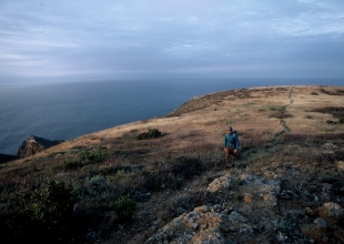 Santa Cruz Island Trail Now Has a Name