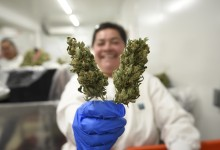 Supes Put a Cap on Cannabis