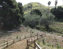 The Bartron Real Estate Group to Host Creek Week Planting at Arroyo Burro Open Space