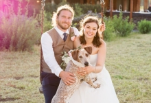 Veils and Tails Offers Wedding Photos with Your Pet Pooch