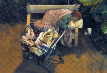 Crackdown Threatens 'Cage Free' Shopping Carts?