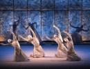 Review | Sankai Juku Entrance Audience