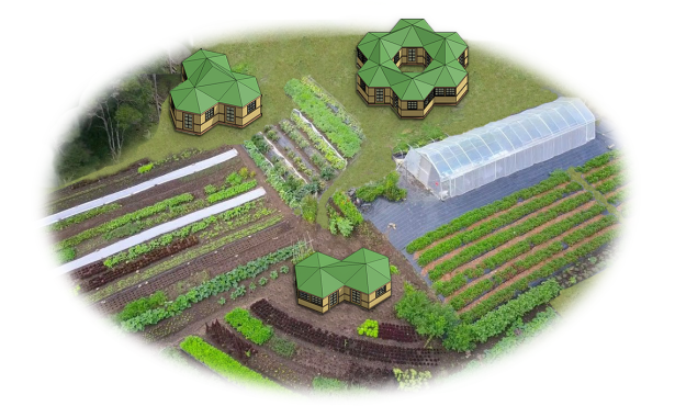 Introducing GeoComb Homes