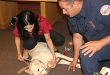 Santa Barbara's First Responders Are Learning First Aid for Pets