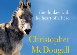 Christopher McDougall Interviewed