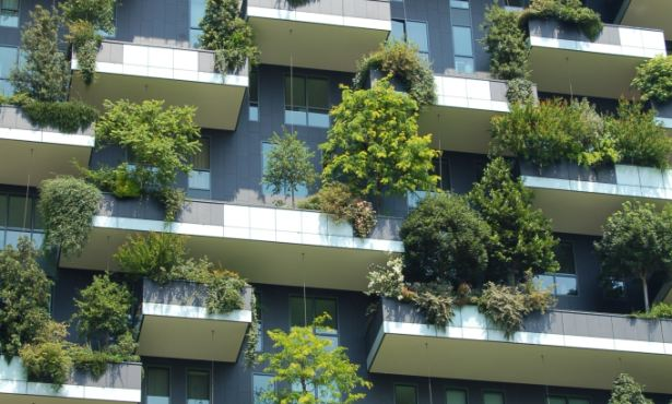 Big Cities Are Starting to  Help the Environment
