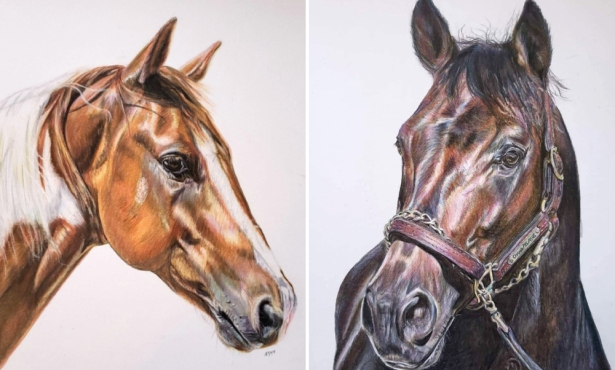 Alice Joy Murphy 'Paints' Horses and Pets with Pencils