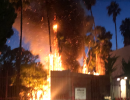 Business Alerted Authorities to Homeless Camp Months Before Tree Fire