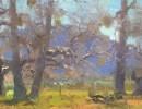 Marcia Burtt Gallery: Arboreal Exhibition