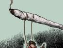 Limit Industrial Marijuana Cultivation in Santa Barbara County