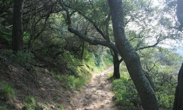Cold Spring Trail Reopens