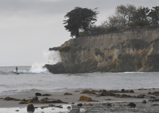 Wanted: Surfing Citizen Scientists